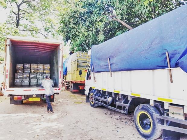 Hal Penting Tentang Cargo